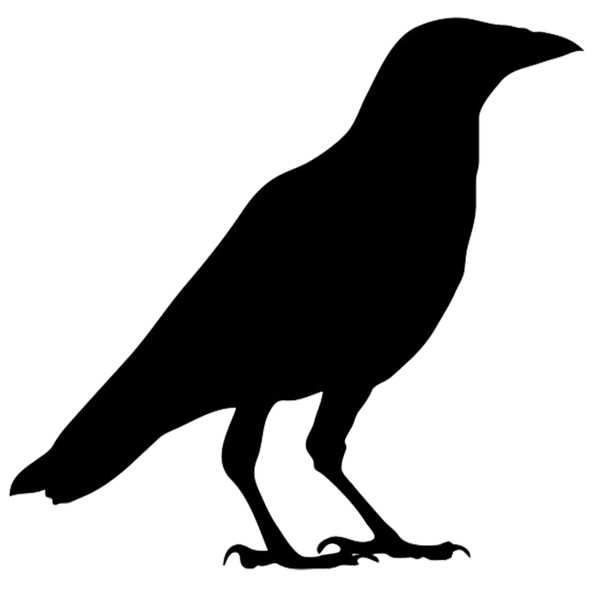 Crow Silhouette Crow Silhouette Silhouette Art Bird Silhouette