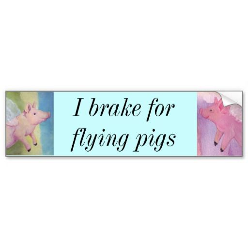 I brake for flying pigs Piggies Bumper Sticker #whenpigsfly