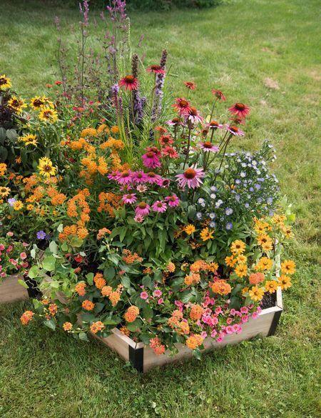 Pollinator Garden Bed - Hexagonal Cedar Bed | Gardeners.com