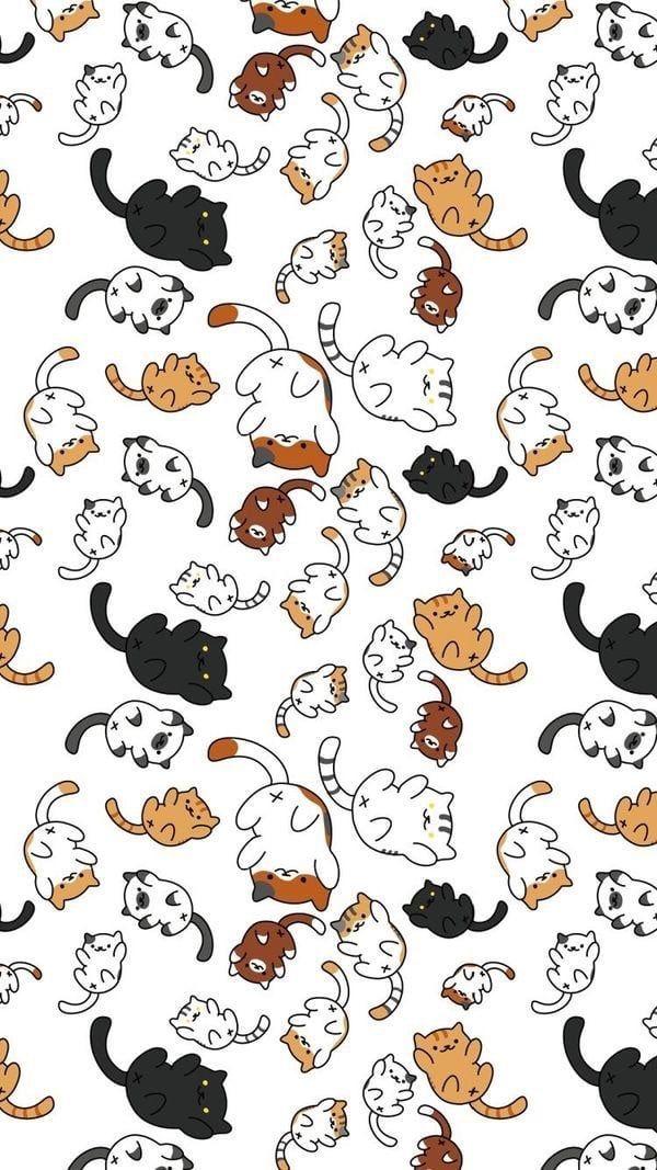 Photo of gatos amantes fondos de pantalla gatos mascotas lindas
