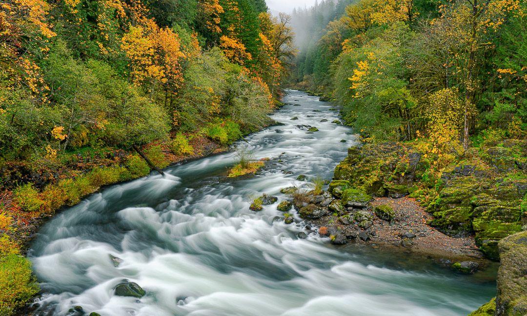 Santiam River In Autumn Oregon Landscape River Landscape Photographers