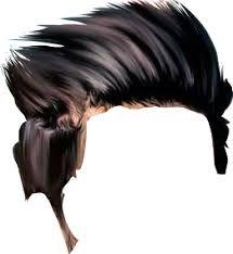 Pin by Goluraikwar on Golu | Hair png, Hair images, Download hair