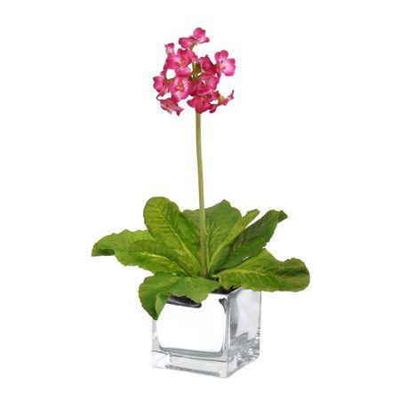 Silk Primula Arrangement in Hot Pink