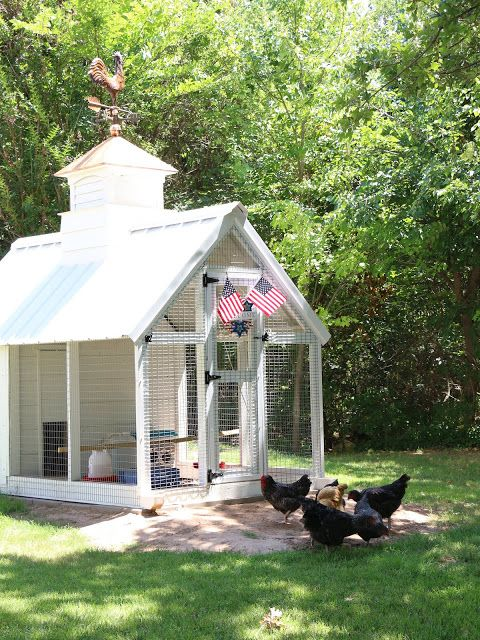 356b44e83650b15f88fa42a0c12b24c5 - Better Homes And Gardens Chicken Coop Plans