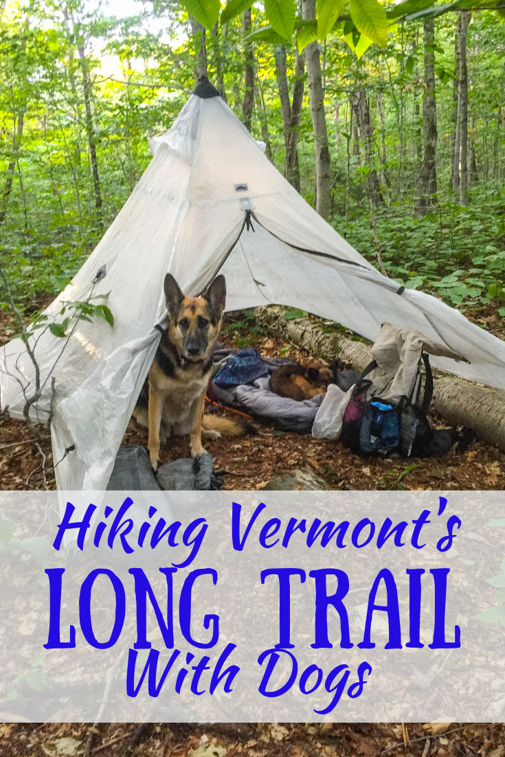 Hiking the Long Trail in Vermont with Dogs An Interview