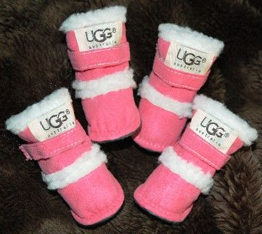 1abc43b7111 Puppy Uggs! @taraohare...you would!   to smile   Pet sweaters, Cute ...