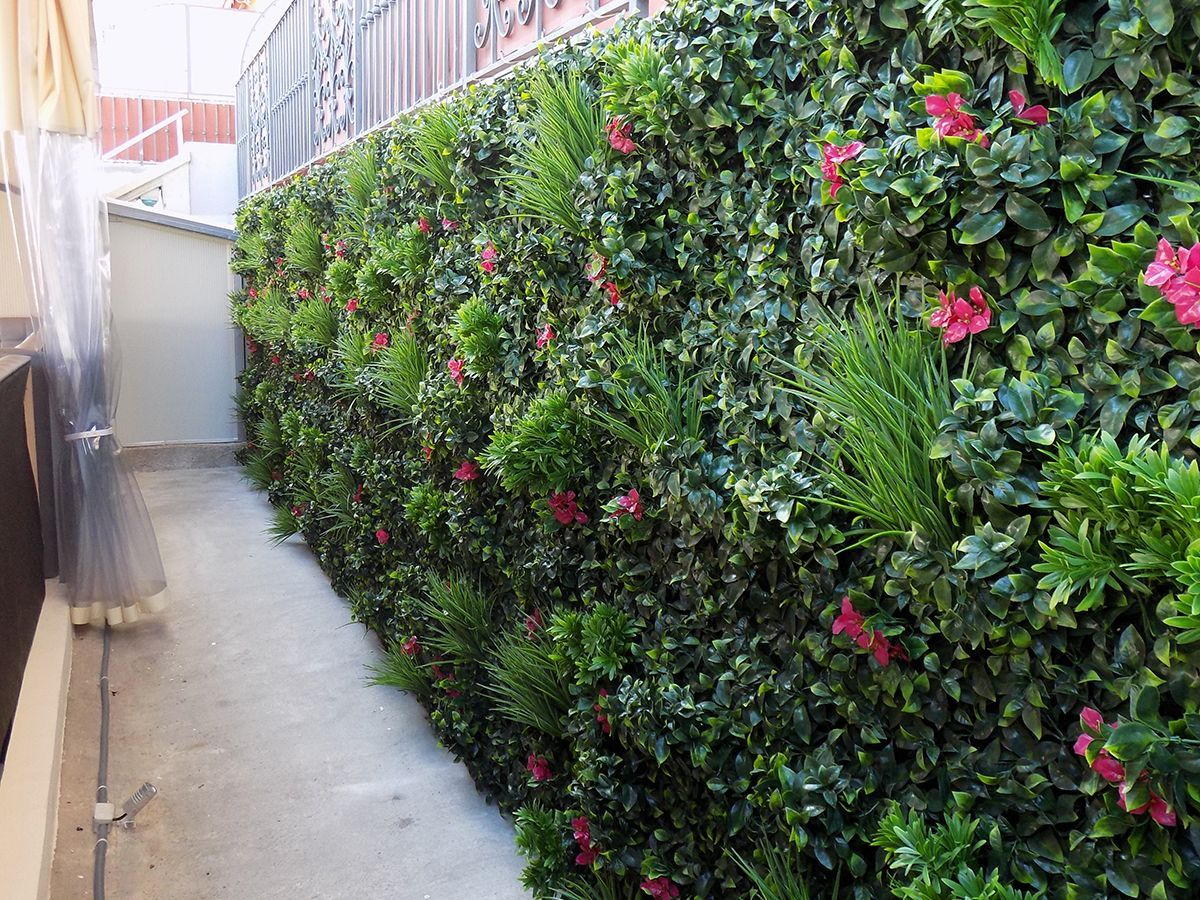 Galerie Photos Mur Vegetal Exterieur Mur Vegetal Idees Jardin