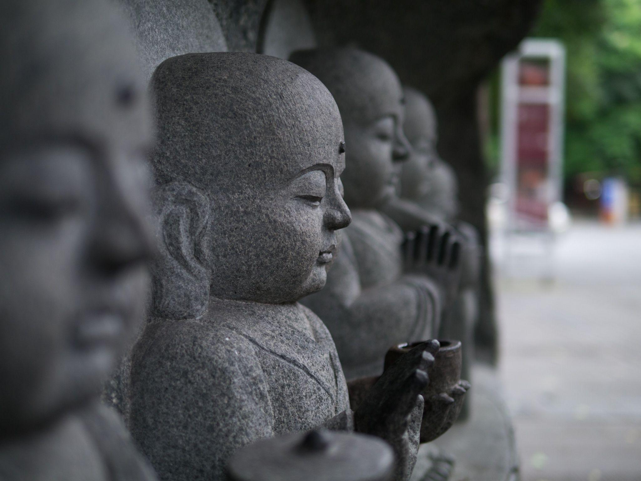 buddha of Wenshuyuan Chengdu - 2014 成都 文殊院