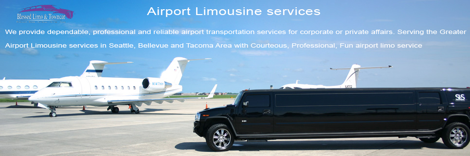 We Provide Dependable Professional And Reliable Airport