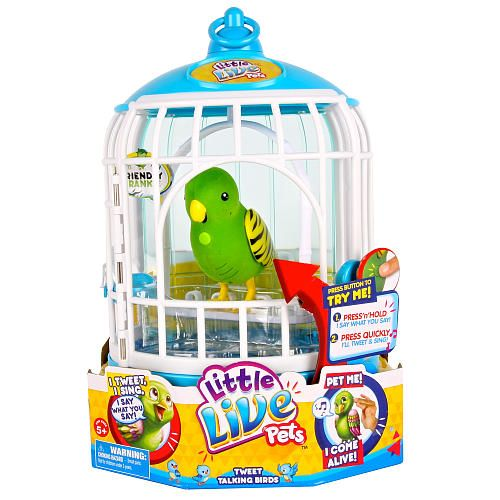 Little Live Pets Bird Cage Friendly Frankie Moose Toys Toys R Us Little Live Pets Top Christmas Toys