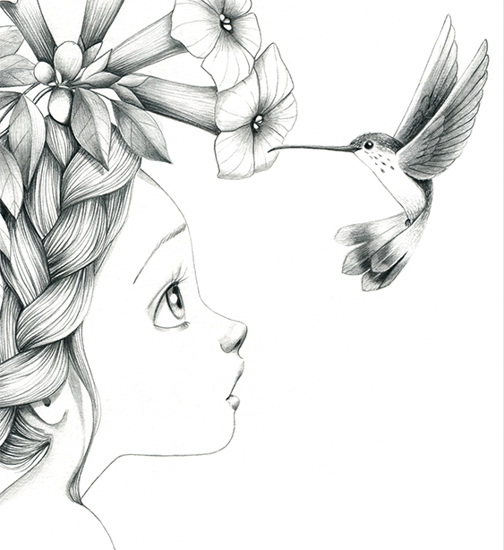 Colibri Dessin Coloriage Dessin Et Illustration