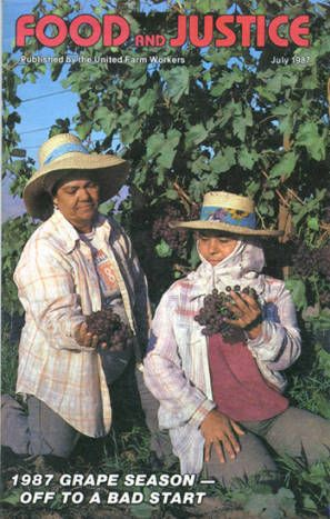 The United Farm Workers (UFW) published the monthly magazine Food and Justice to keep its members and other interested parties up to date with issues important to the Farm Workers movement. The July 1987 issue featured a story on the current grape season and its related boycotts. Millie Moser Smith Papers. Latino Cultural Heritage Digital Archives.