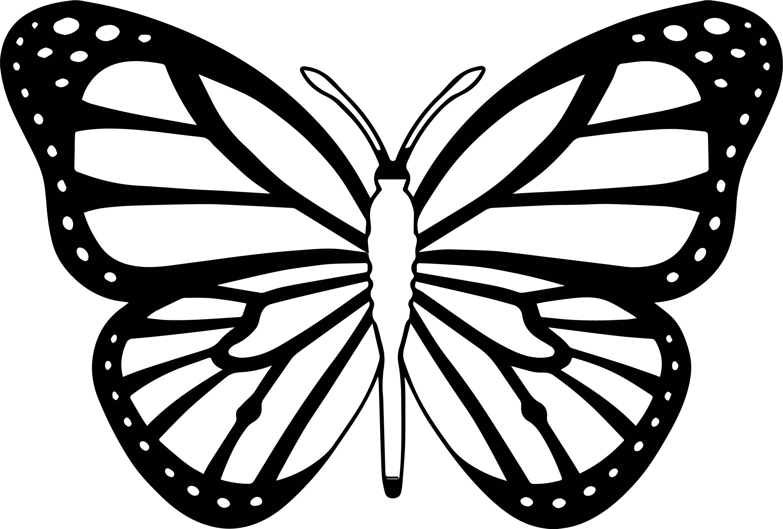 Butterfly Coloring Page Butterfly Coloring Page 30 Wecoloringpage Motyle Tatuaze Motyle Kolorowanki