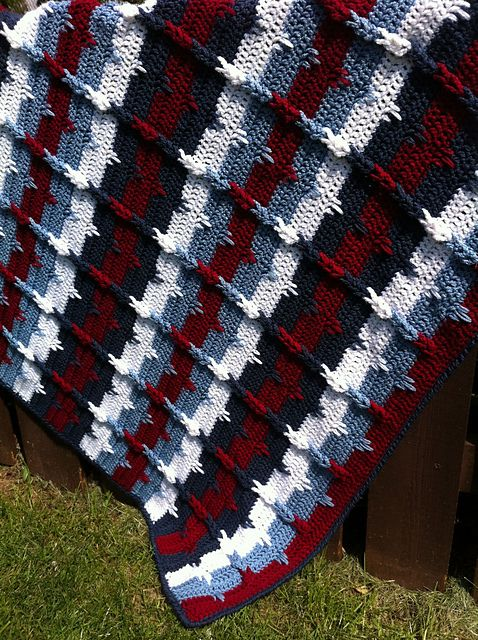 Ravelry: Project Gallery for Southwestern Cables Afghan pattern by ...