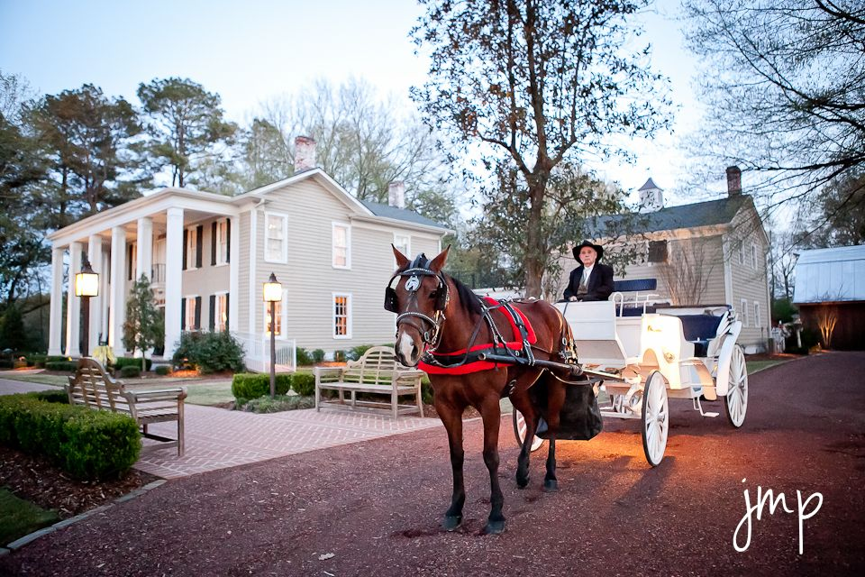 Horse drawn carriage, wedding, The OAKS, Centreville, AL