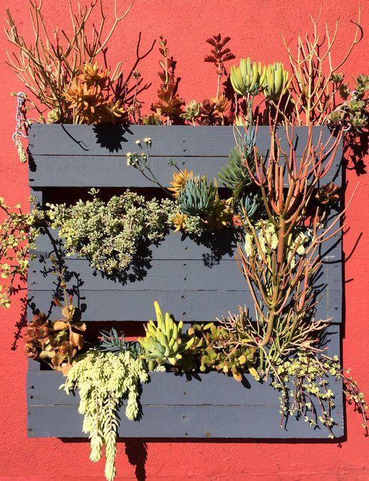 Tipps Palettengarten                                                       …