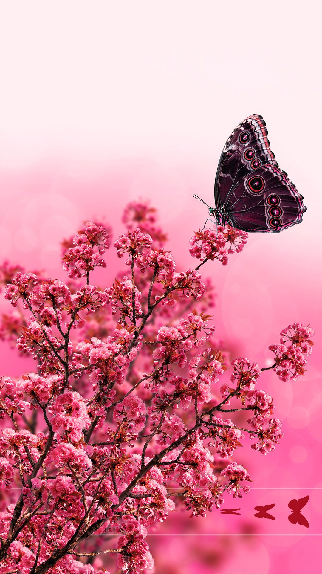 Tap And Get The Free App Lockscreens Art Creative Nature Flowers Butterfly Pink Red Hd Iphone 6 Plus Lock Sc Creative Art Cute Cat Wallpaper Cute Wallpapers