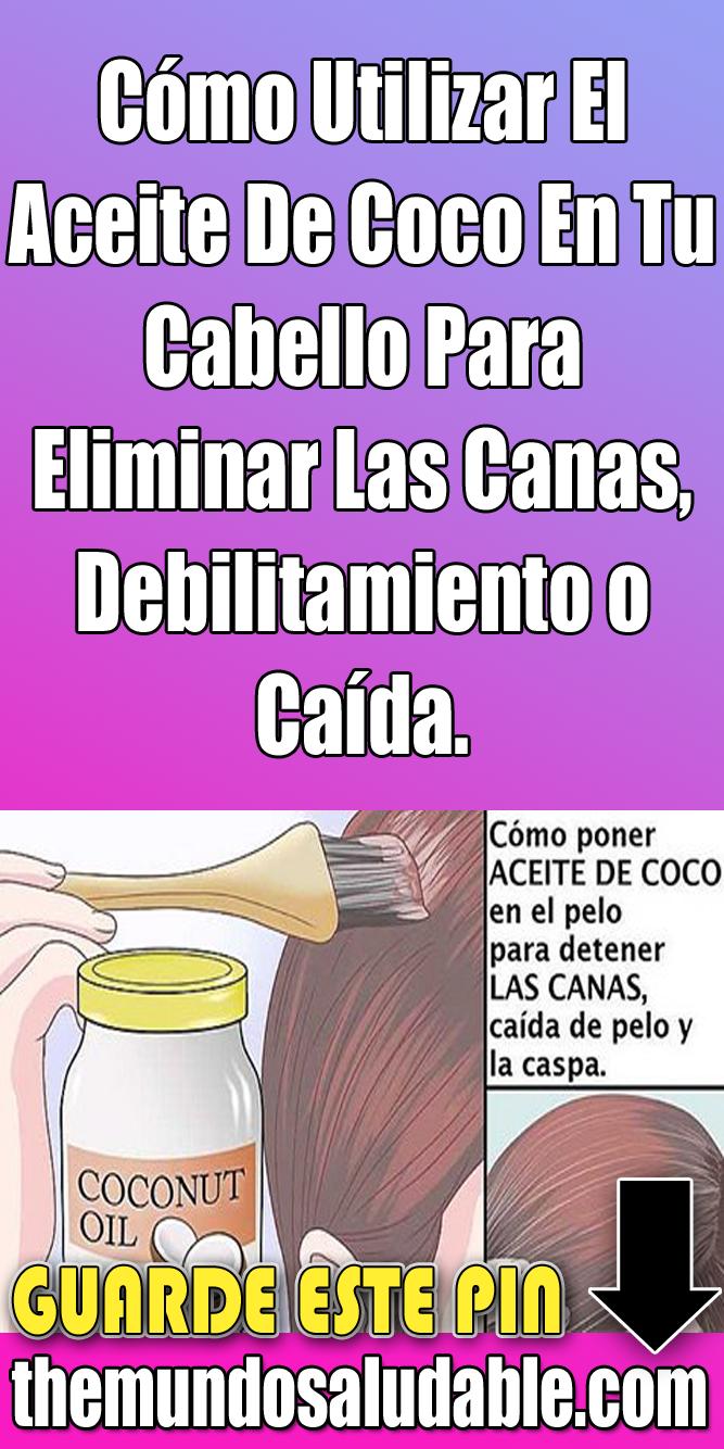 Cómo Utilizar El Aceite De Coco En Tu Cabello Para Eliminar Las Canas Debilitamiento O Caída Aceite De Coco Pelo De Coco Cabello