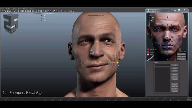 3D Facial Rig Manager for Maya & 3ds Max by Snappers Systems