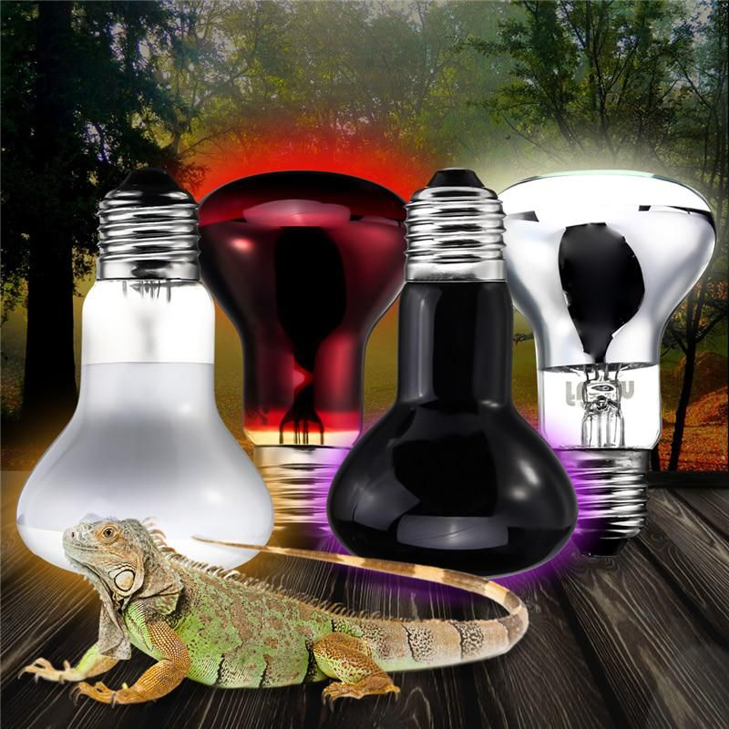 Smuxi 25w 50w 75w 100w R63 Warm White Basking Sun Heat Reptile Light Bulb Ac 220 240v Reptile Lights Heat Lamps Bulb