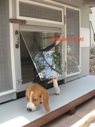 Pantip Com R9901512 ประต บ านน องหมา ใช ว สด อะไรด คะ Diy Do It Yourself