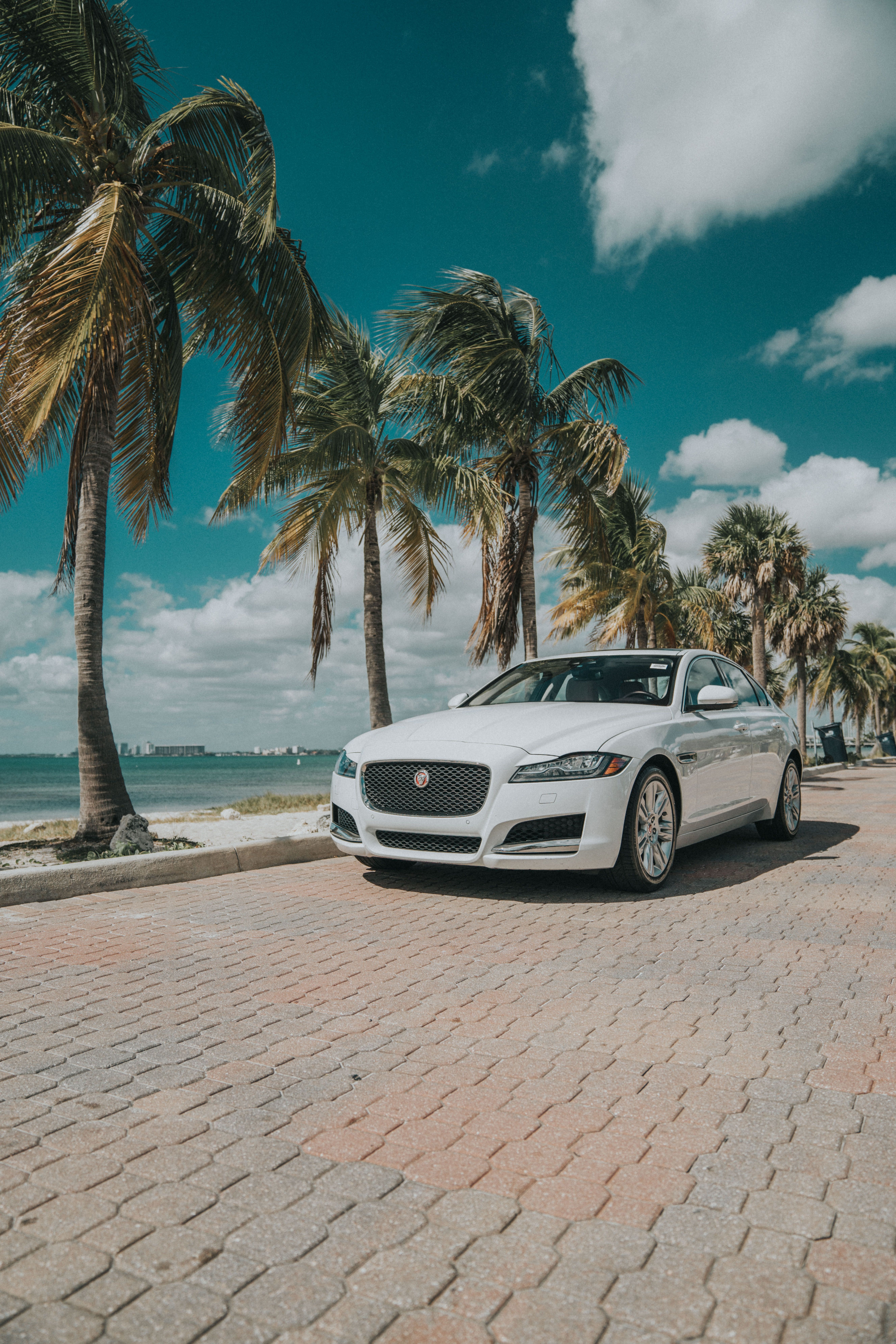 The Jaguar Everyone Wants In Their Life Miamibeach Keybiscayne Usedcars Preownedvehicles Luxurycars Used Cars Cars For Sale Cars