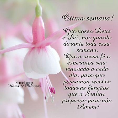 Imagens De Boa Semana Mensagens Frases Good Morning E Good