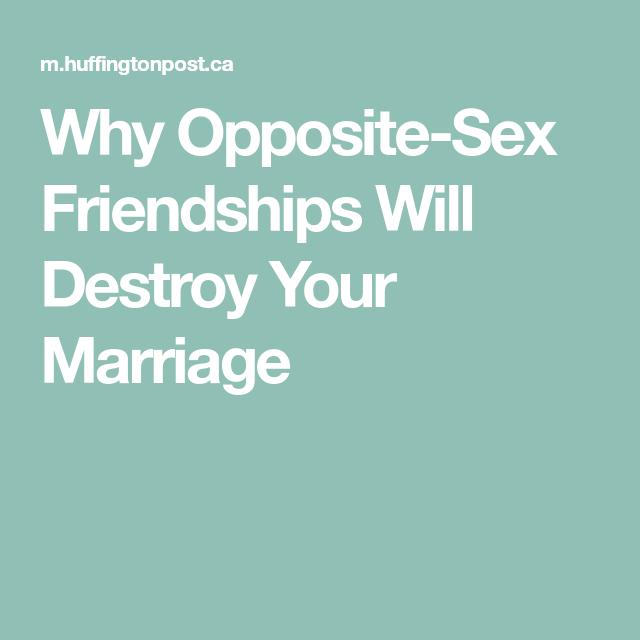 Friendship of the opposite sex