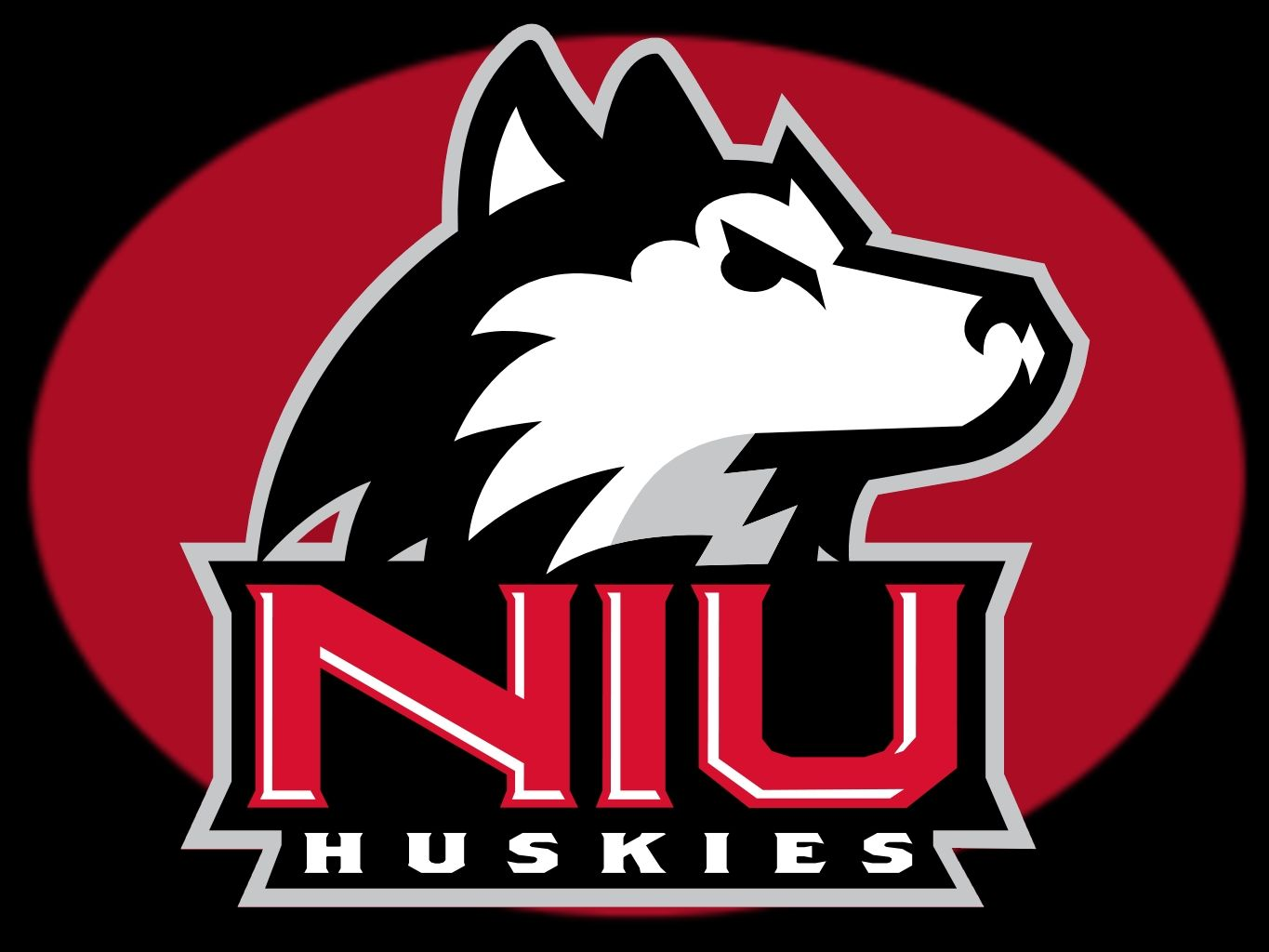 Niu Huskies Northern Illinois University Huskies Ncaa National Collegiate Athletic Associ Northern Illinois Huskies Northern Illinois University Logo Wall