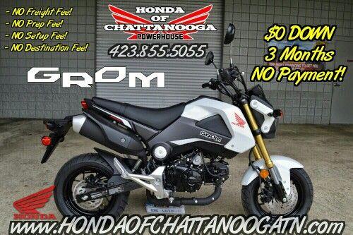 white honda grom for sale - chattanooga / knoxville & nashville tn