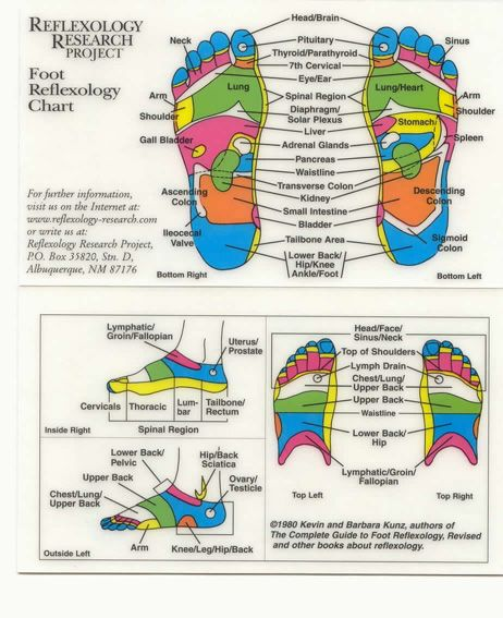 I love the principles of reflexology Just wish I was better at - how to make a chart in word