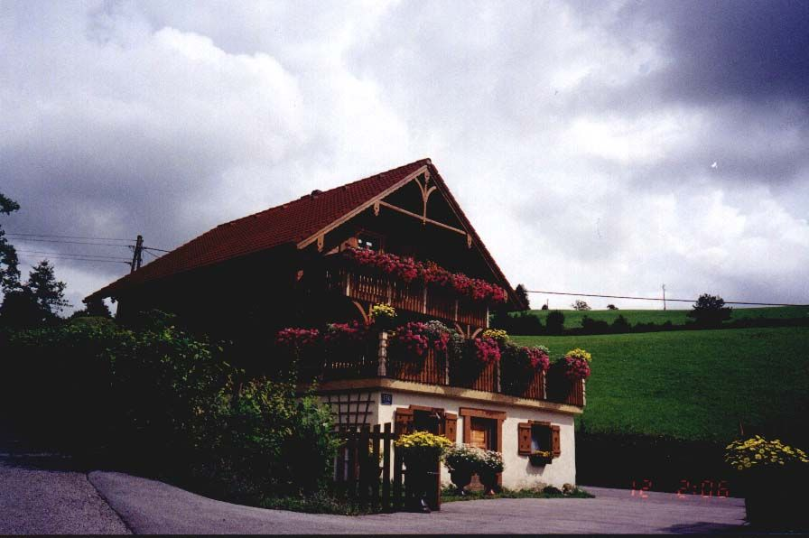 Google Image Result for http://www.luxfamily.com/travel/austria/images/flower.jpg