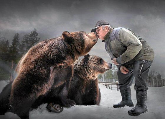 Sulo Karjalainen jutustelee taukoamatta suloisille karhuilleen. Kuusamon Suurpetokeskus