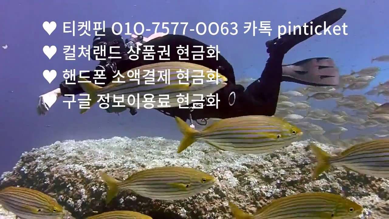 티켓핀 O1O-7577-OO63, 구글 정보이용료 결제 현금화 방법 및 수수료