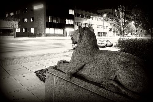 Kc Life Lion With Images Life Insurance Companies Kansas City Kansas