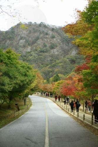 Naejangsan National Park #JeollaDo #SouthKorea