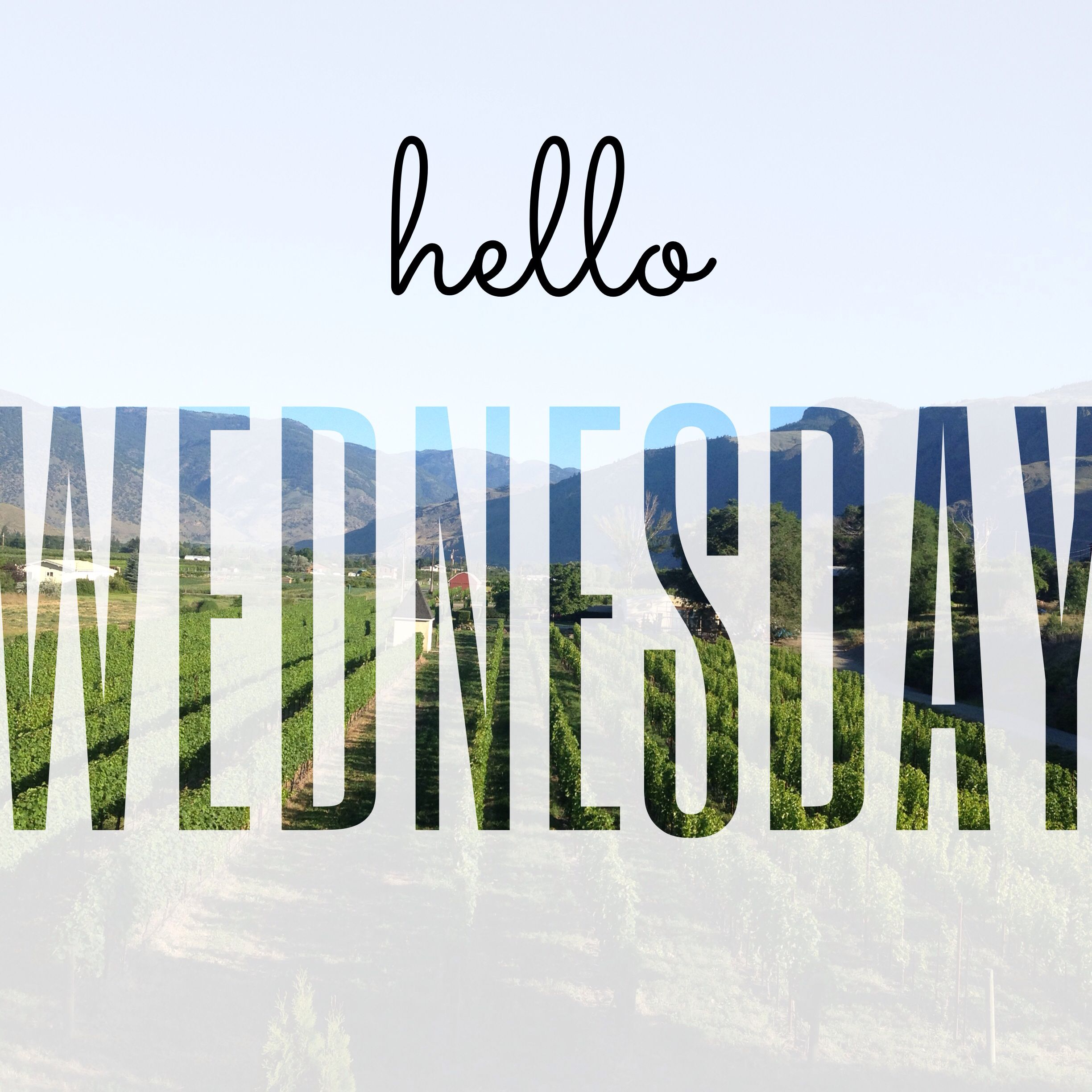 Hello monday have a great week love image collections - Cleaning Up The Back Yard And Getting Everything Ready For This Weekend Walk With Alaina And Paxton Softball Game This Evening Should Be A Good Day