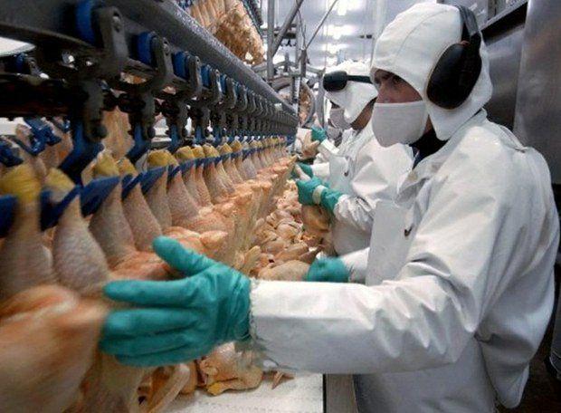 centro de información nutricional de la carne de pollo