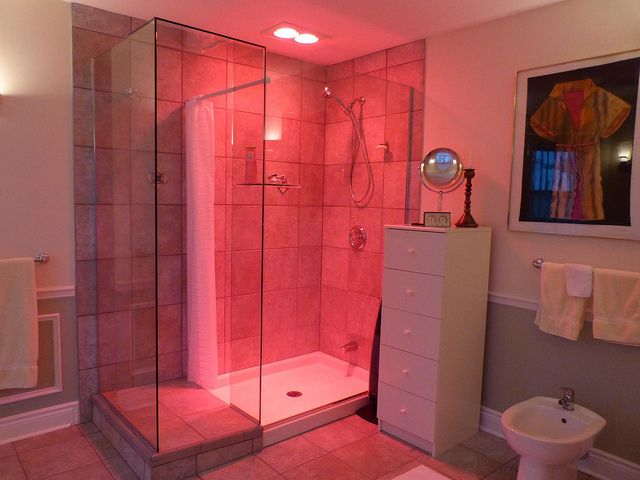 heat lamp for shower