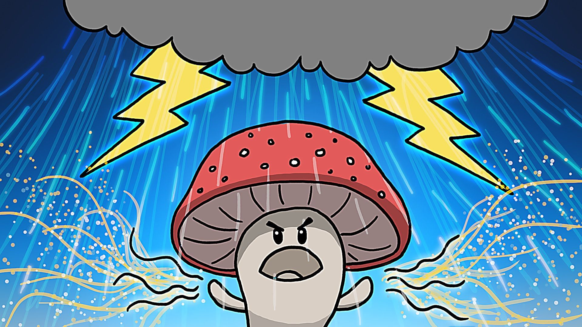 How Mushrooms And Their Spores Make It Rain With Images