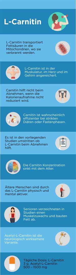 Abnehmen L Carnitin