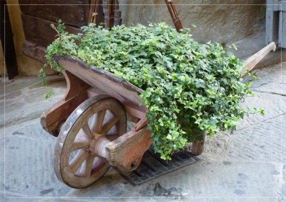 Shabby Chic Planting • Mabel & Rose - Vintage garden and country living