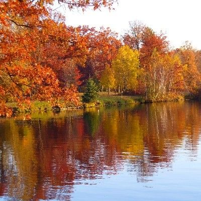 Stunning Fall Scenery Northern Wisconsin Wisconsin Fall Colors Scenery Fall Foliage Map