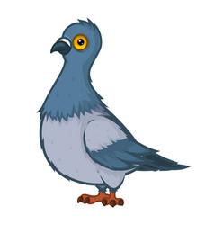 Cartoon Pigeon Royalty Free Vector Image Vectorstock Cartoon Styles Bird Illustration Cartoon Drawings