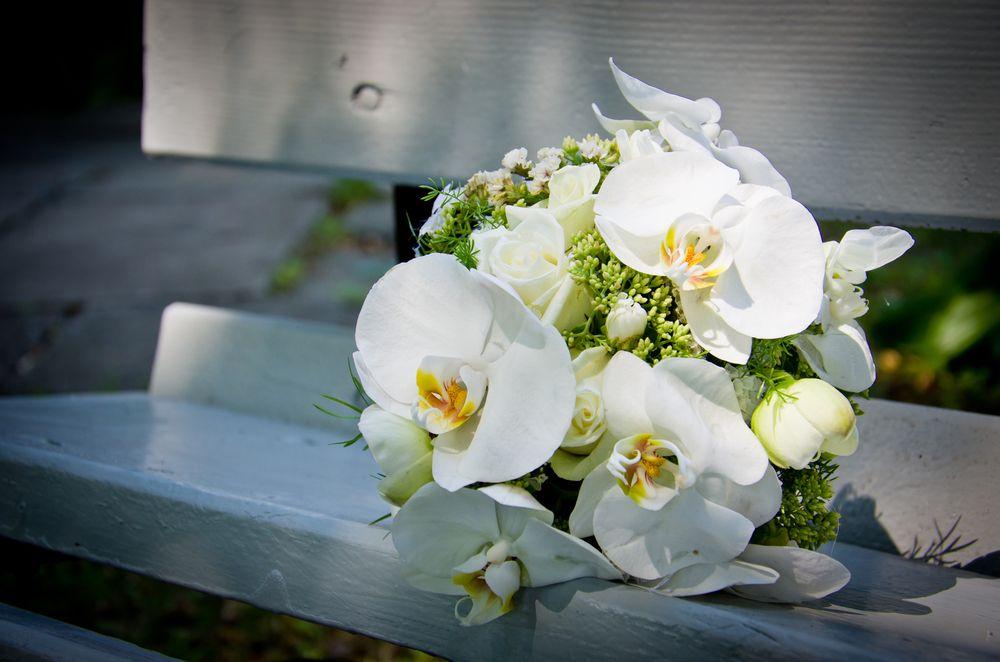 brautstrau orchideen google suche brautstrau pinterest brautstr u e suche und google. Black Bedroom Furniture Sets. Home Design Ideas