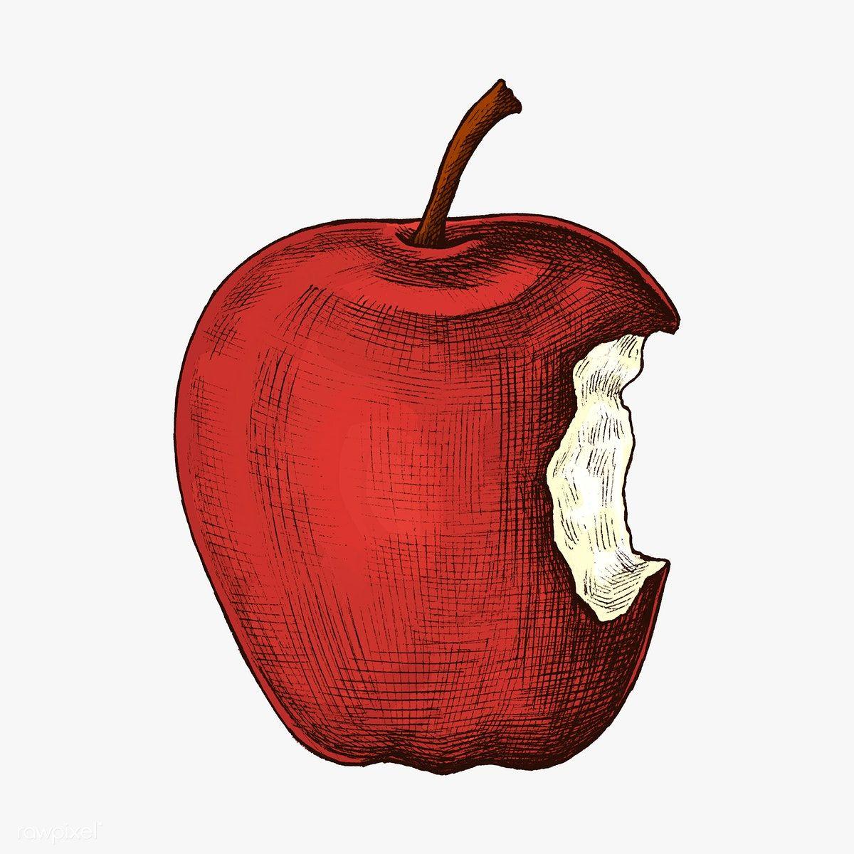 Download Premium Illustration Of Fresh Ripe Bitten Red Apple Illustration Apple Illustration Apple Tattoo Apple Art