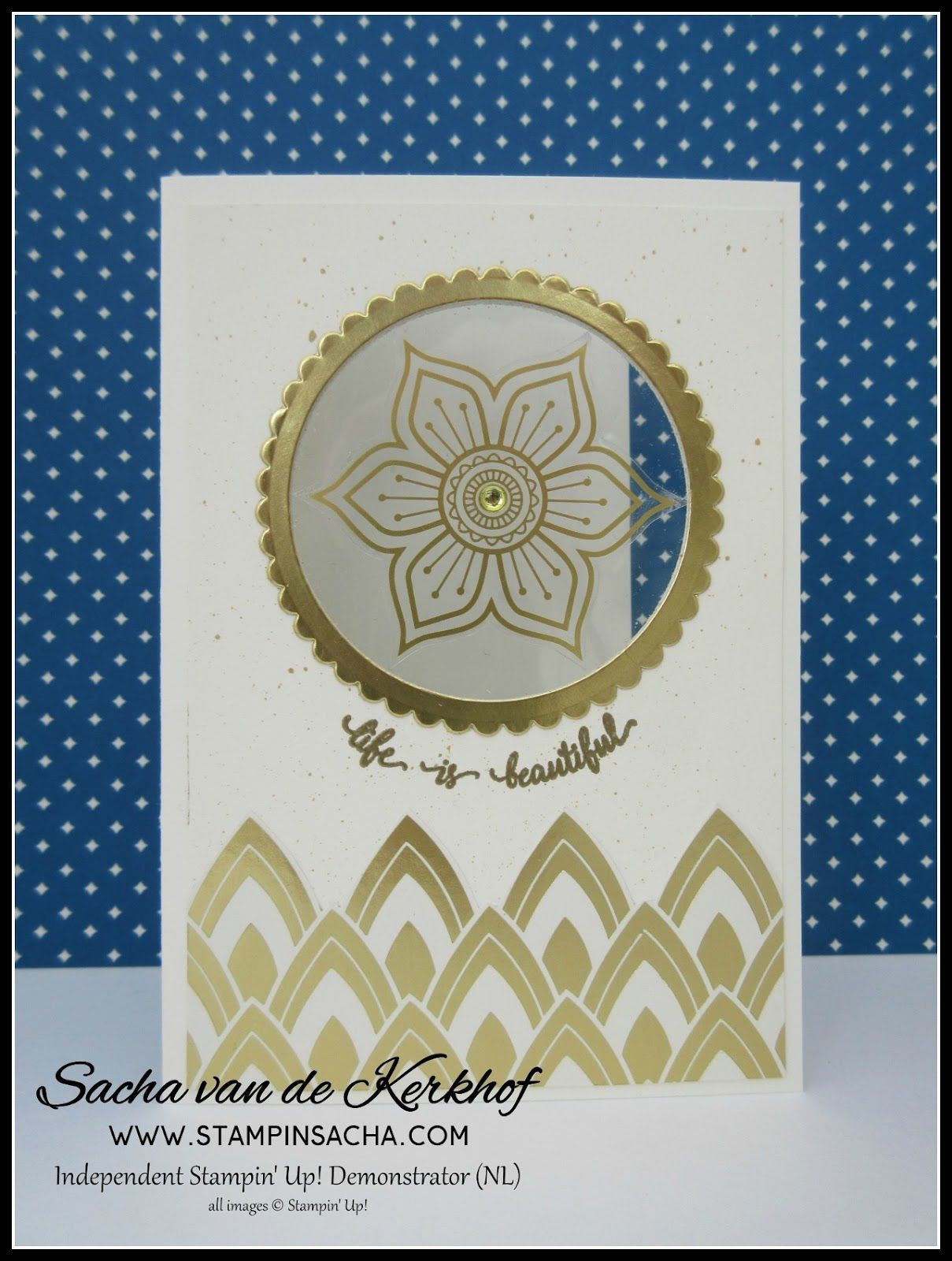 Window sheet with gold foil border eastern palace pinterest window sheet with gold foil border clear cardhandmade greetingsstampin m4hsunfo