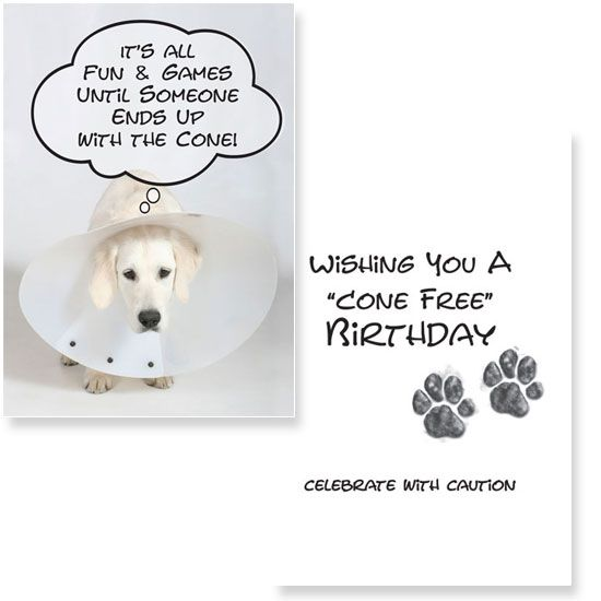Wishing you a cone free birthday no love like dog love 2014 new cone free birthday wholesale pet gifts for retailers dog speak cards bookmarktalkfo Images