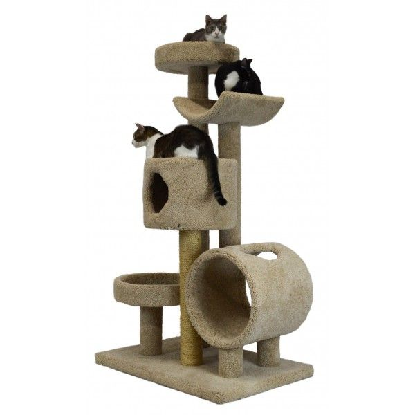 Large 23L42 Kitty Gym CatsPlay Superstore Cool cat