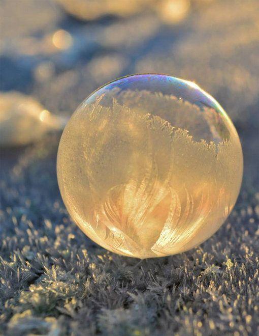 Frozen Bubbles - Angela Kelly